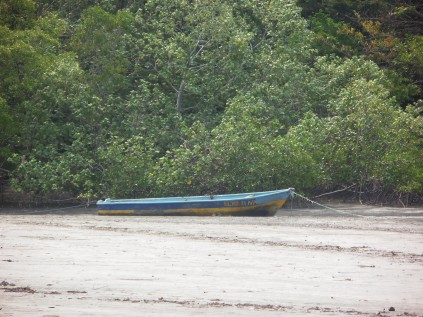 Saw a picture of this boat on another blog...it was floating! Tide was in!