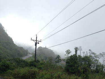 The foggy trail